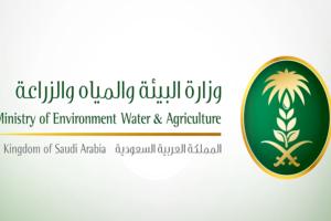 رابط التقديم على وظائف وزارة البيئة والمياه والزراعة 1441